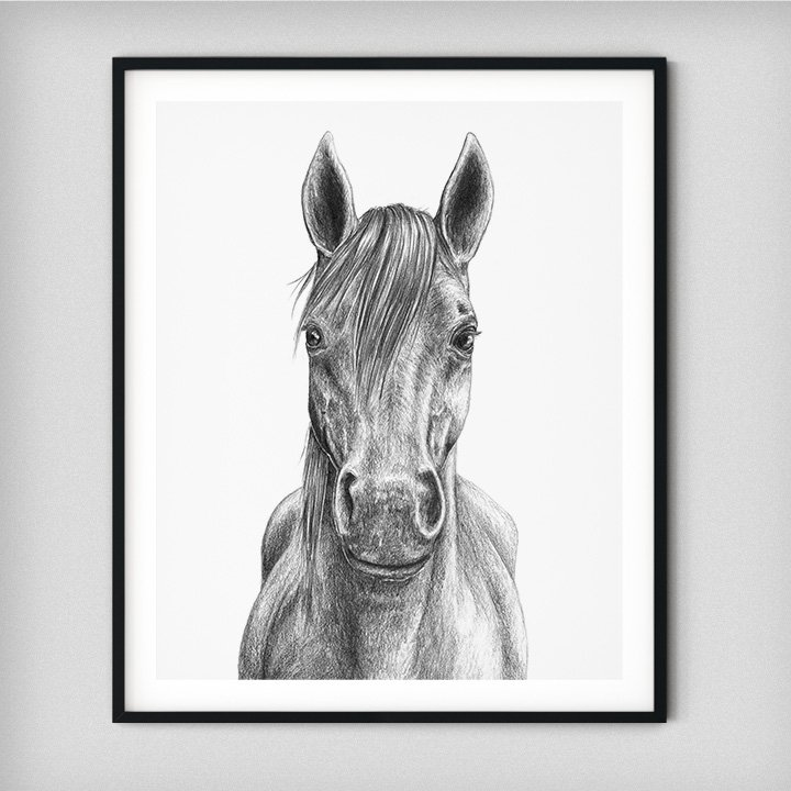 black-and-white-horse-portrait-drawing-art