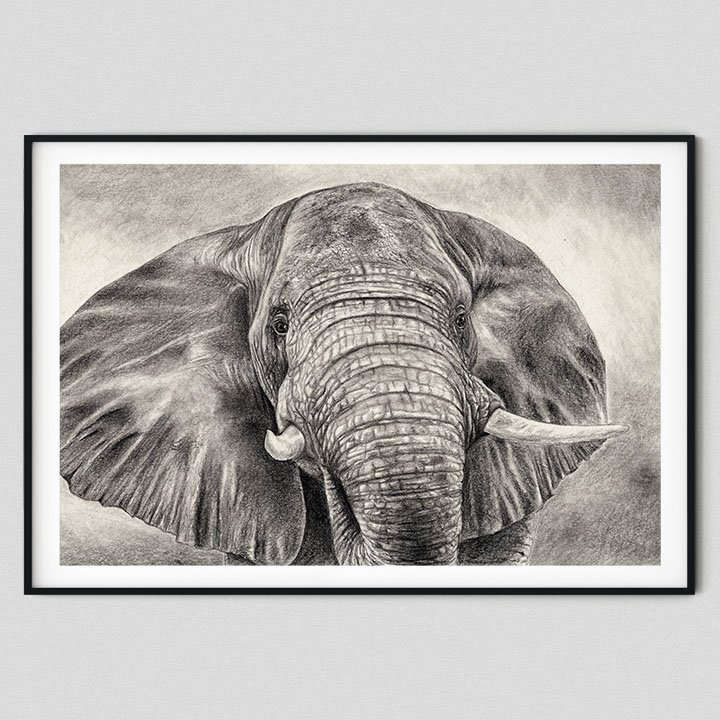 pencil-drawing-home-decor-elephant