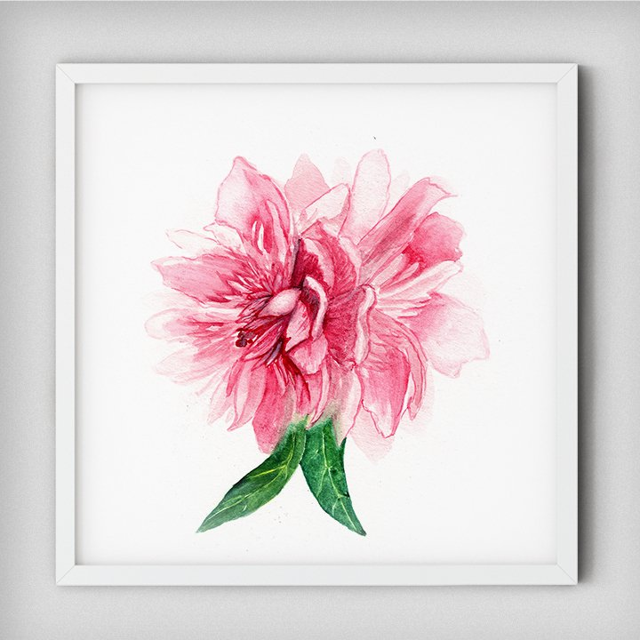 peony-watercolor-floral-painting-wall-decor