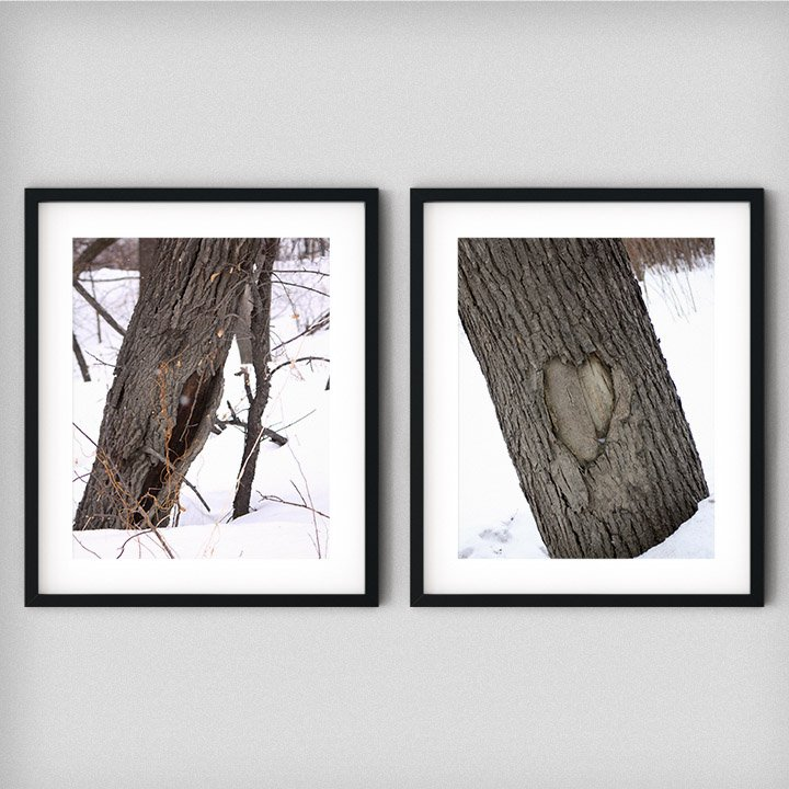 tree-of-hearts-photography-prints