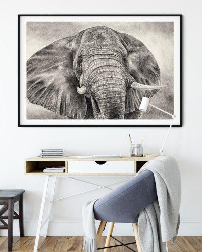 animal-art-elephant-wall-decor