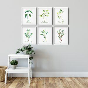 herbs-spices-botanical-kitchen-wall-art
