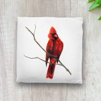 throw-pillow-cardinal-bird-nature-art
